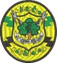 Liberton Lightning Logo Proof