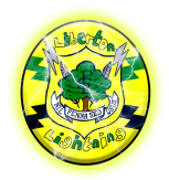 liblightninglogoelec1